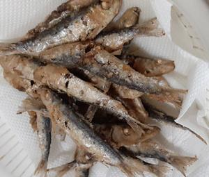 1月19日 魚を食べよう!