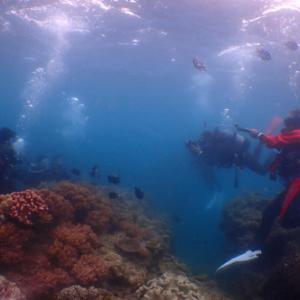 3月23日 沖縄体験ダイビング~♪