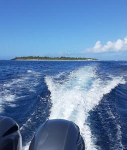 9月26日 水納島&瀬底島ファンダイビング