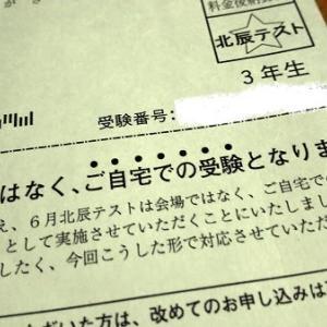 特別定額給付金 40万円の分け方