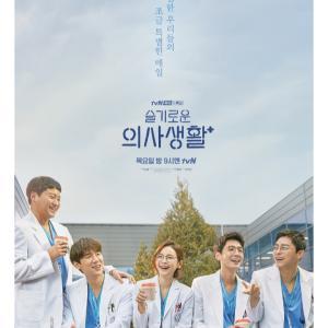 次に見る韓国ドラマは・・