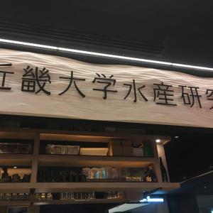 マグロで大阪マラソン打ち上げ会