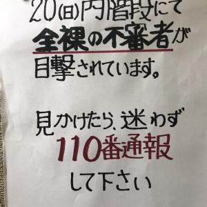 全裸キタ━(゚∀゚)━!