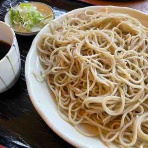 美味しい「○新(まるしん)」蕎麦にはさらに手作り肉まんがついてくる!