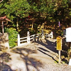 唐沢山神社の紅葉