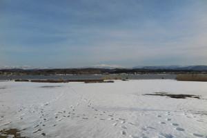 雪の木場潟