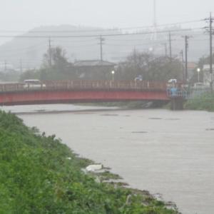 台風25号の影響か・・・大雨です~茂原