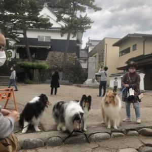 岡崎公園お散歩オフ会