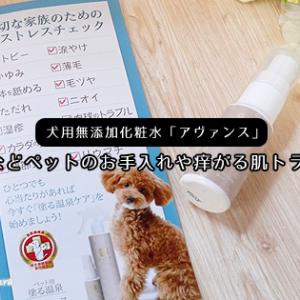 犬用無添加化粧水「アヴァンス」犬猫などペットのお手入れや痒がる肌トラブルに