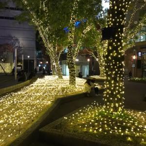 クリスマスツリーと新しいラグ