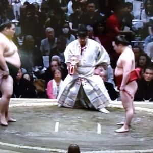 大相撲、こうすれば盛り上がる?