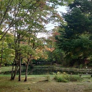 紅櫻公園 謎に広~~い日本庭園
