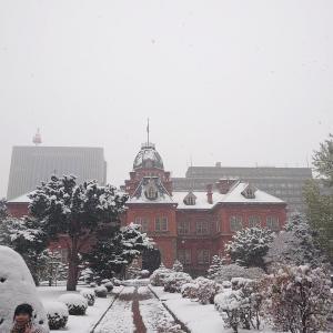 とうとう雪の季節に突入です