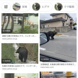 クマ? 札幌市内に出没!!
