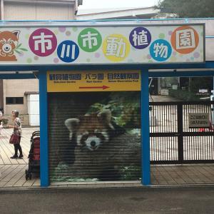 市川市動植物園&松月庵で天丼セットをお蕎麦で!