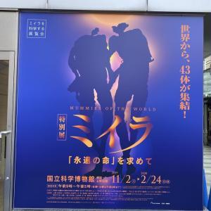 ミイラ特別展&湯島天神の菊まつり