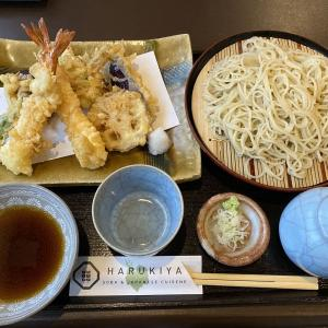 中央区『馳走蕎楽はるきや』季節限定はかぼす切り蕎麦!