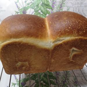 酒種酵母の食パンとクルミパンなど♪