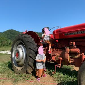 【初めてのドライブ】牧場で乳搾り体験♡