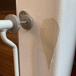 【半年点検補修】ビリビリに敗れた壁紙を補修してもらった結果