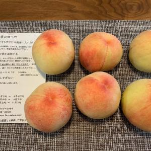【ふるさと納税】桃と野菜