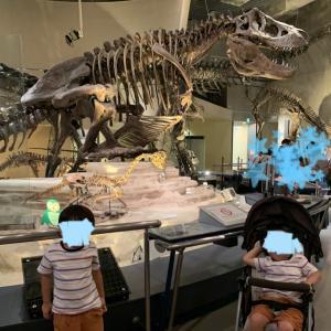【国立科学博物館】何歳から楽しめる?コロナ禍&夏休みの混雑状況。