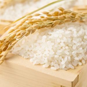 【ご感想】ご飯の糖分が乳酸菌の栄養になるなんてびっくり!〜ダイエット・便秘・花粉症〜