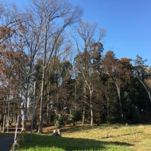 川越にある山王塚古墳は近代の天皇陵と同じ上円下方墳でしかも最大