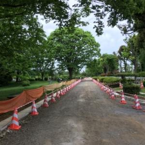 小平霊園内で行われている道路工事と新青梅街道側入口前のサイゼリヤの想定外の後継店