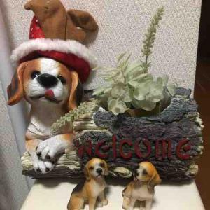 とりあえず、クリスマス