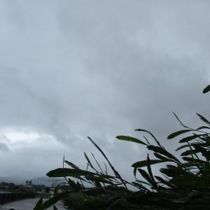 台風の被害はありませんでした^^