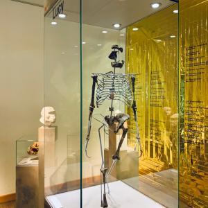 ドイツの博物館でルーシーに会う by sen