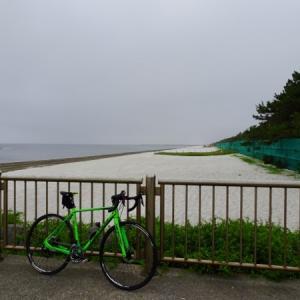 約一ヶ月半ぶりの軽いサイクリング(シクロ)