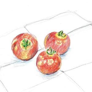 ミニトマトを色鉛筆で描く