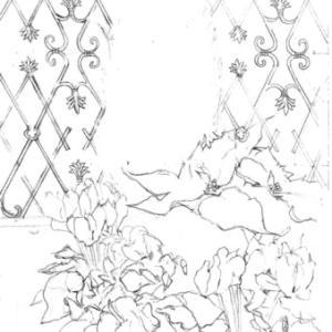 ベランダ 冬の寄せ植えを描く