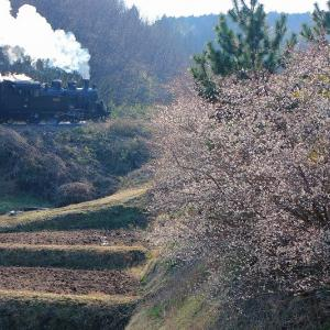 山里の春~真岡鐡道