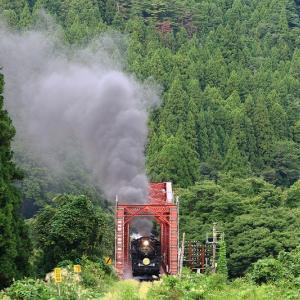緑一色の中の赤い鉄橋~磐越西線
