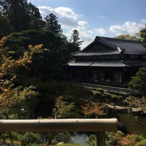 奈良 吉城園