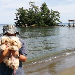 シルバーウィークは琵琶湖から能登へその⑥ 恋路海岸・見附島