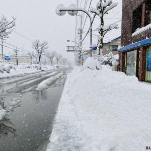 3年ぶりの大雪