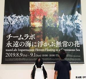 金沢21世紀美術館でのチームラボ展