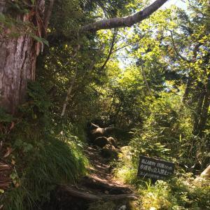 ちょっと今から縦走してくる 2日目後半 〜スゴ乗越小屋、薬師岳、薬師峠キャンプ場〜