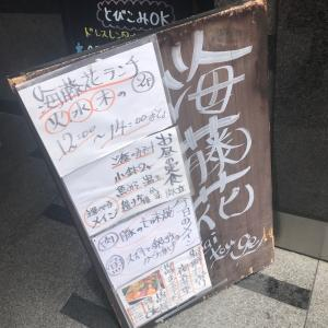 痔【海藤花】