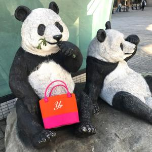 パンダ公園にイニシャルバックを持って!!