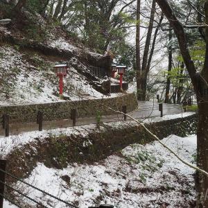 高尾山の雪 - part2