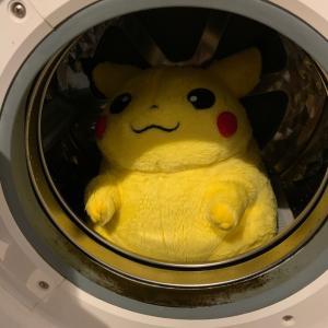 ピカチュウ洗濯チュウ