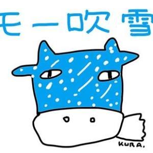 11月15日「北海道」