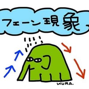 1月29日「象」
