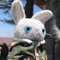 【素人がカッコつけてVlog】秩父ミューズパークのイチョウ並木|ロータスエリーゼでお出かけ