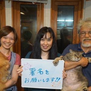 【署名のお願い】動物の死にも尊厳を! ゴミと一緒に焼かないで 横須賀・動物火葬場の存続を求めます